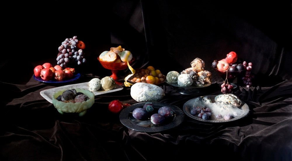 Jeanne Dunning, Still Life with Pomegranates, 2010, photographie. © Jeanne Dunning, collection Frac LR.