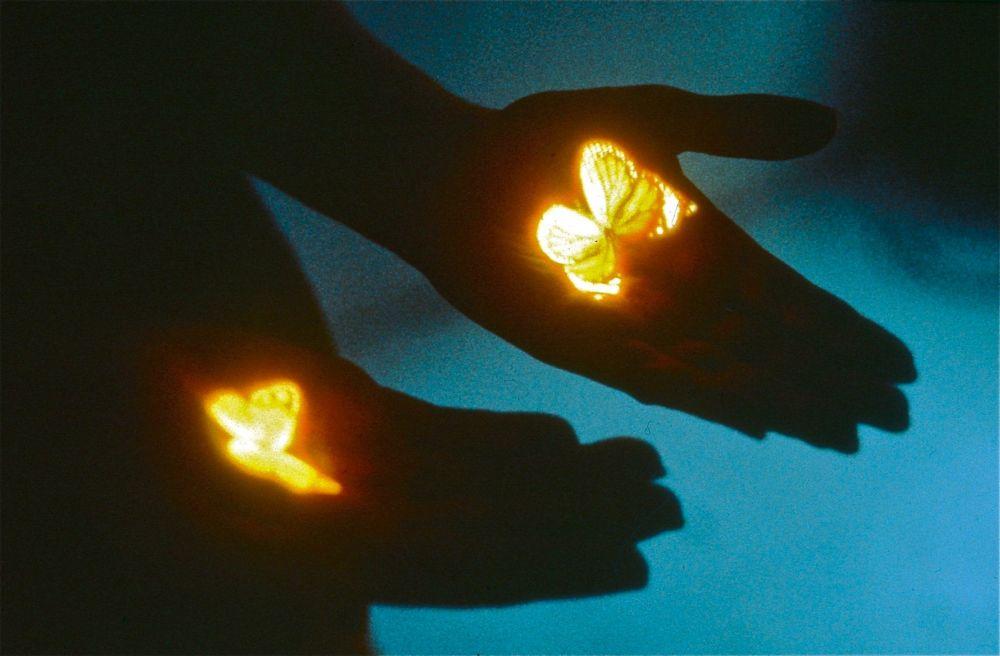 Bertrand Gadenne, Les Papillons, 1998, projection aérienne d'une diapositive (image à recueillir dans la paume de main). Collection Frac Occitanie Montpellier